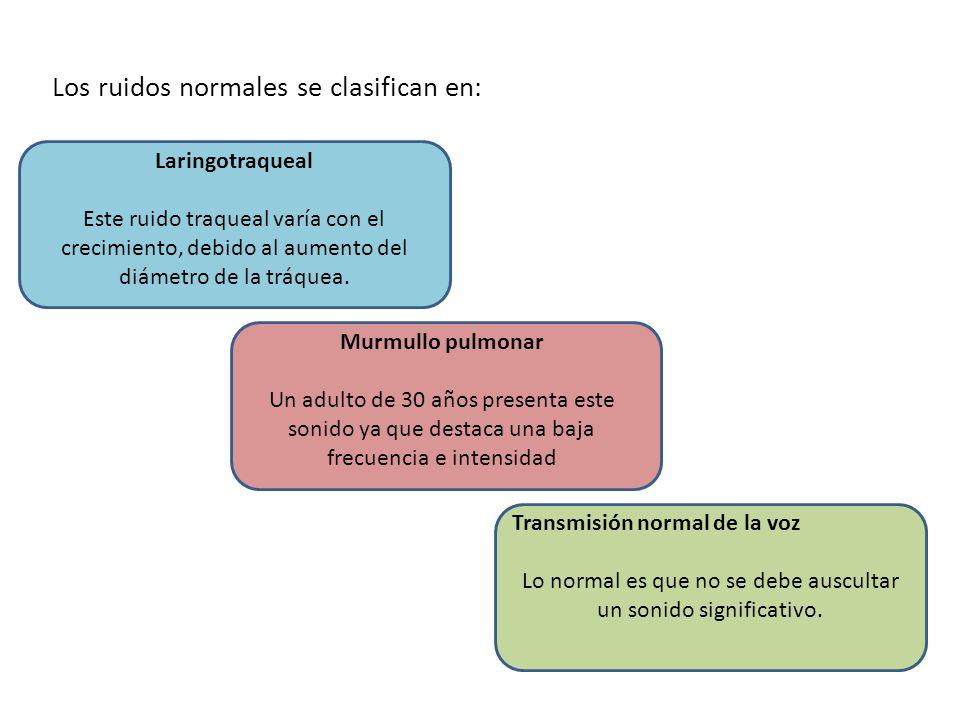 Los ruidos normales se clasifican en:
