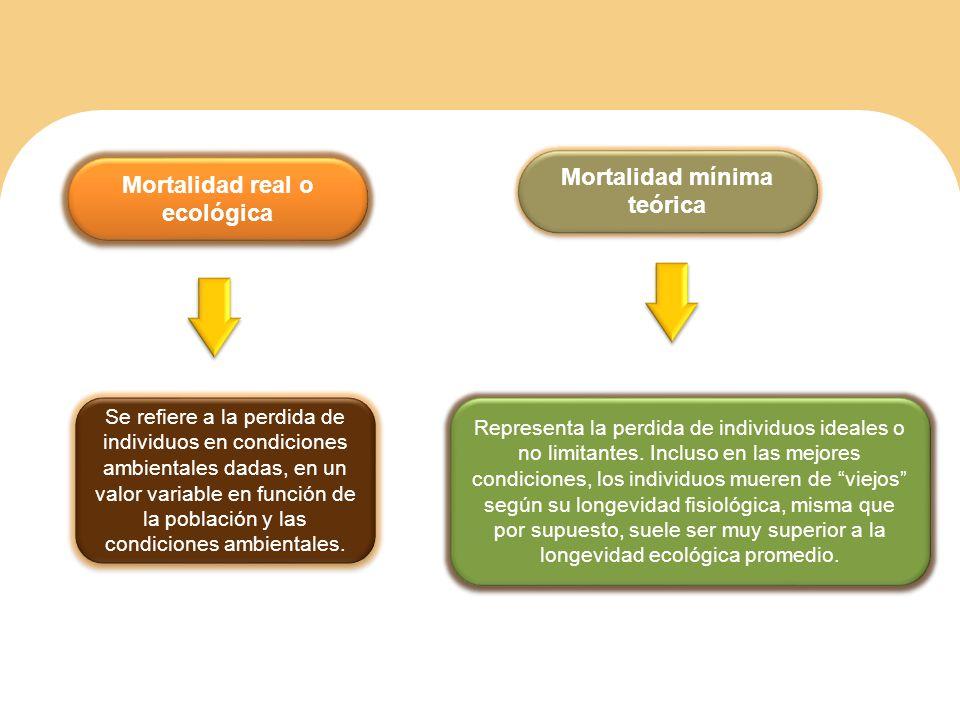 Mortalidad mínima teórica Mortalidad real o ecológica