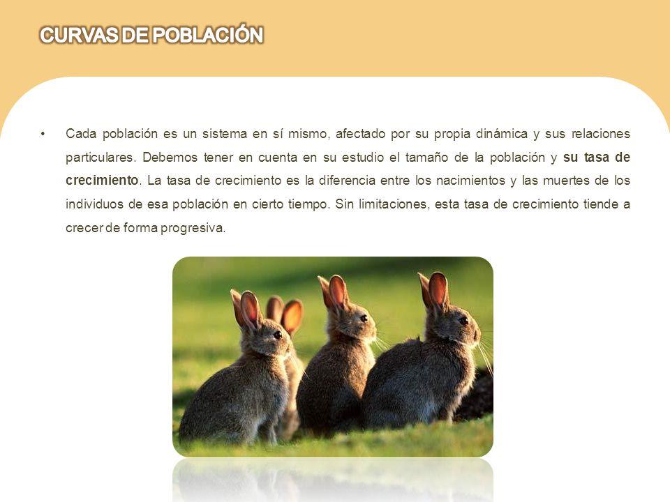 CURVAS DE POBLACIÓN
