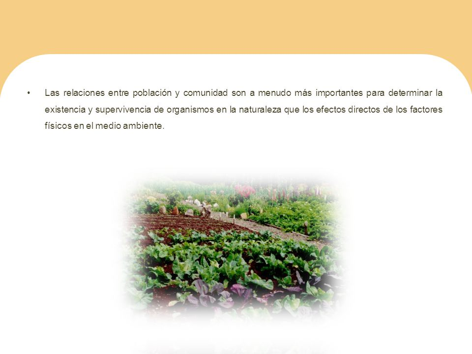 Las relaciones entre población y comunidad son a menudo más importantes para determinar la existencia y supervivencia de organismos en la naturaleza que los efectos directos de los factores físicos en el medio ambiente.