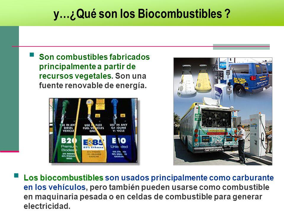y…¿Qué son los Biocombustibles