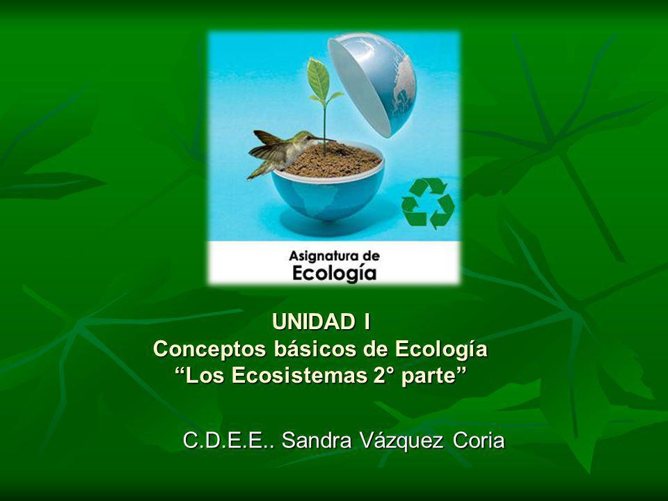 UNIDAD I Conceptos básicos de Ecología Los Ecosistemas 2° parte