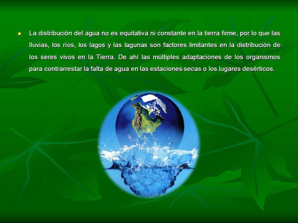 La distribución del agua no es equitativa ni constante en la tierra firme, por lo que las lluvias, los ríos, los lagos y las lagunas son factores limitantes en la distribución de los seres vivos en la Tierra.