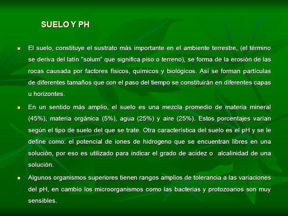 SUELO Y PH