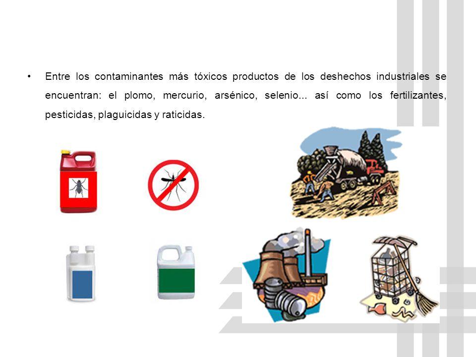 Entre los contaminantes más tóxicos productos de los deshechos industriales se encuentran: el plomo, mercurio, arsénico, selenio...