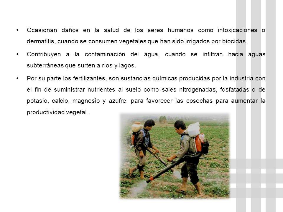 Ocasionan daños en la salud de los seres humanos como intoxicaciones o dermatitis, cuando se consumen vegetales que han sido irrigados por biocidas.