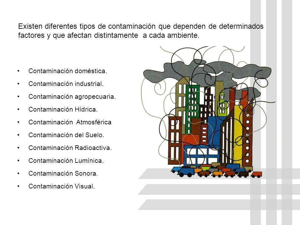 Existen diferentes tipos de contaminación que dependen de determinados factores y que afectan distintamente a cada ambiente.