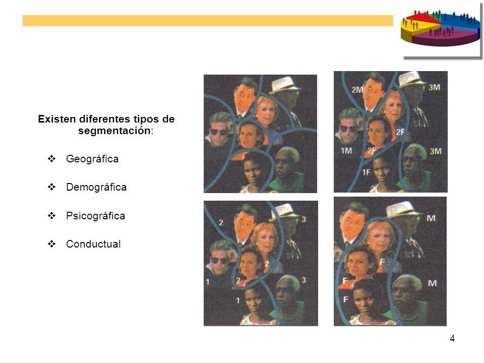 Existen diferentes tipos de segmentación: