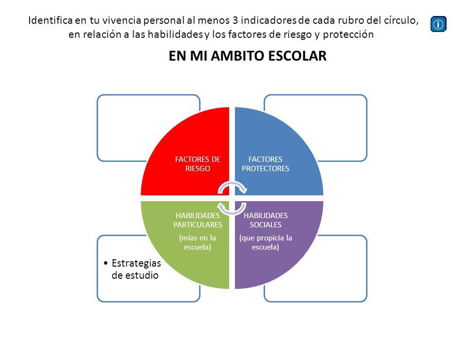 Identifica en tu vivencia personal al menos 3 indicadores de cada rubro del círculo,