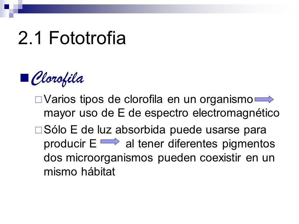 2.1 Fototrofia Clorofila. Varios tipos de clorofila en un organismo mayor uso de E de espectro electromagnético.