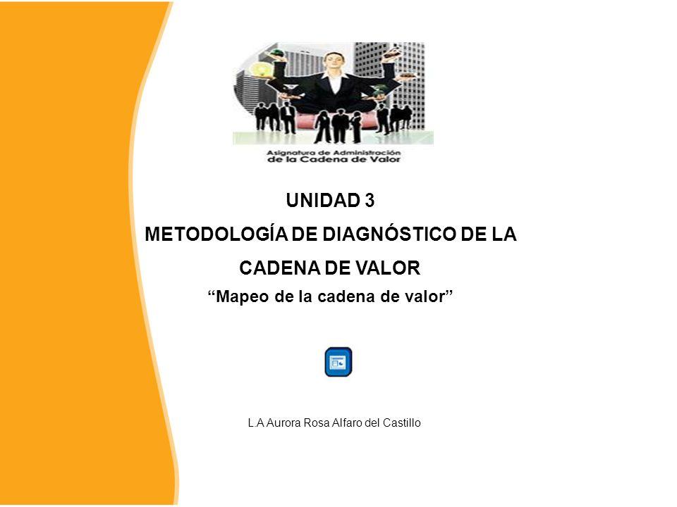 UNIDAD 3 METODOLOGÍA DE DIAGNÓSTICO DE LA CADENA DE VALOR