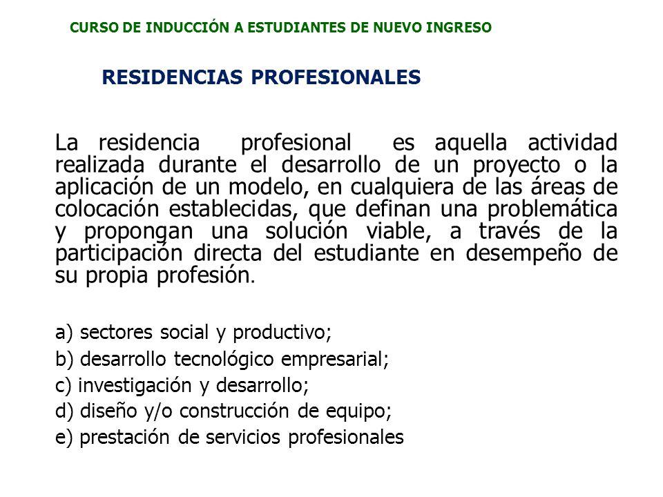 a) sectores social y productivo;