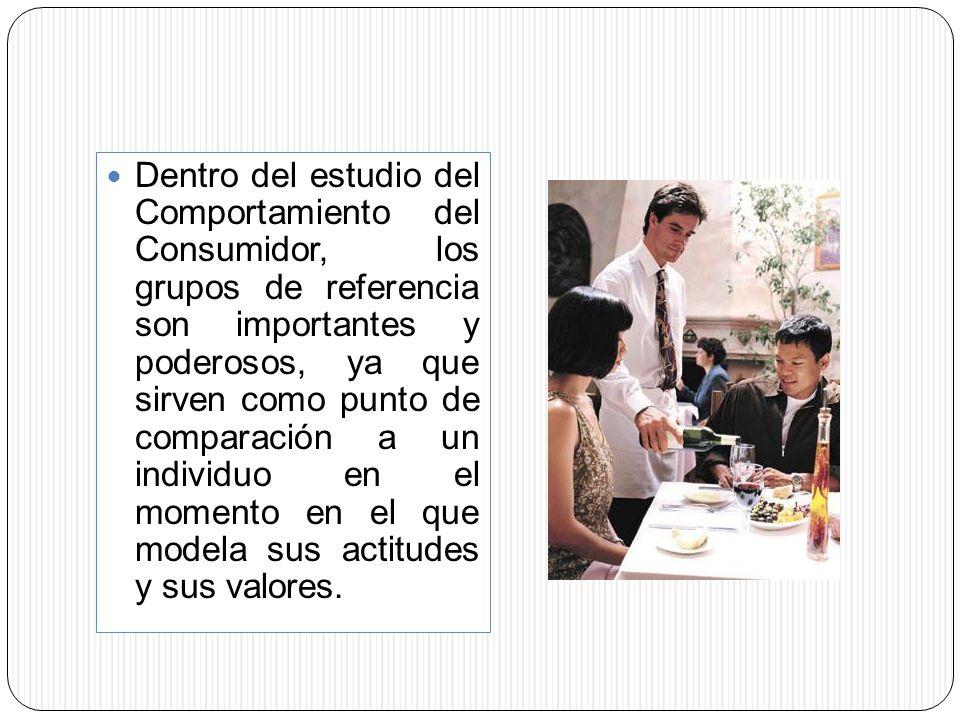 Dentro del estudio del Comportamiento del Consumidor, los grupos de referencia son importantes y poderosos, ya que sirven como punto de comparación a un individuo en el momento en el que modela sus actitudes y sus valores.