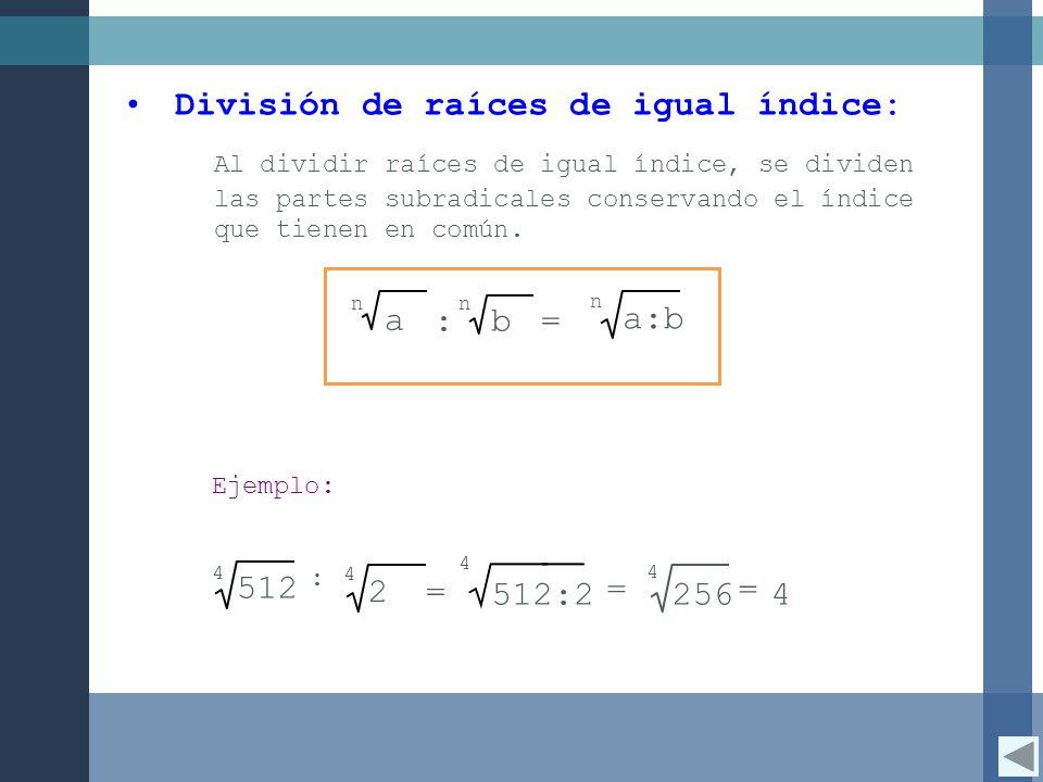 División de raíces de igual índice: