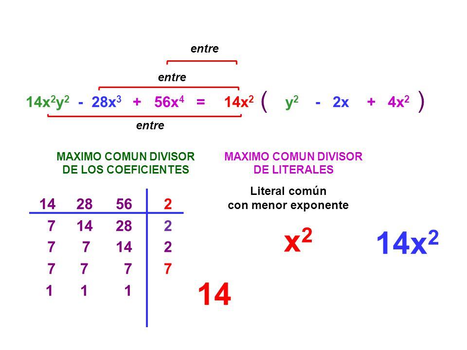 entre entre. ( ) 14x2y2. - 28x3. + 56x4. = 14x2. y2. - 2x. + 4x2. entre. MAXIMO COMUN DIVISOR.