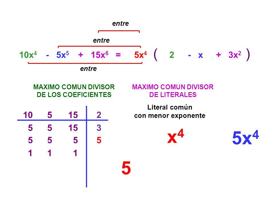 entre entre. ( ) 10x4. - 5x5. + 15x6. = 5x4. 2. - x. + 3x2. entre. MAXIMO COMUN DIVISOR.