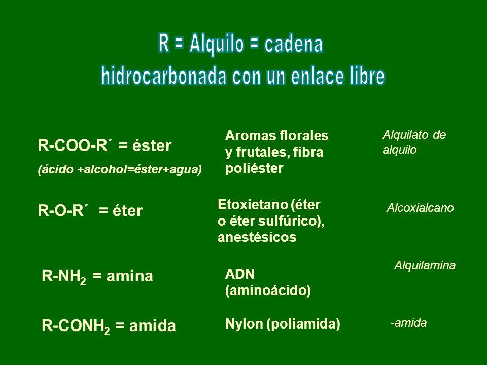 hidrocarbonada con un enlace libre