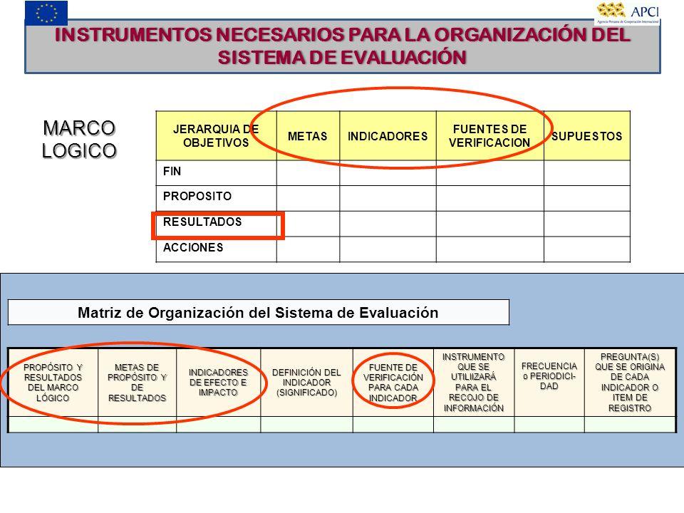 INSTRUMENTOS NECESARIOS PARA LA ORGANIZACIÓN DEL SISTEMA DE EVALUACIÓN