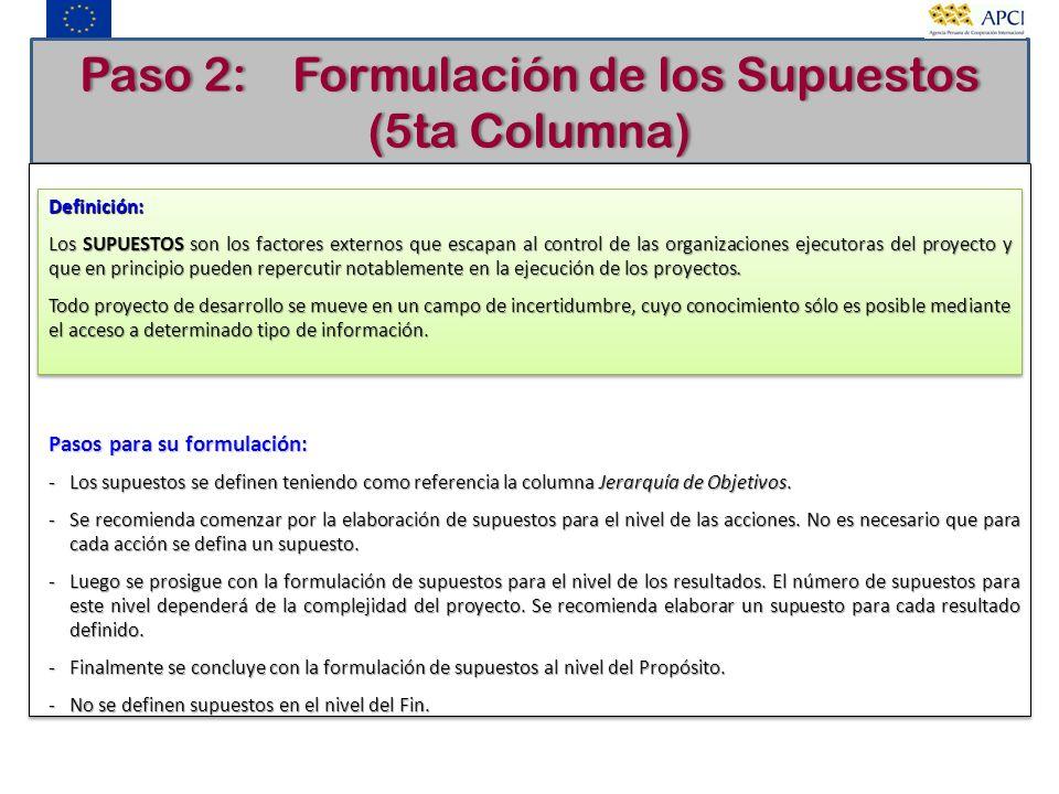 Paso 2: Formulación de los Supuestos (5ta Columna)