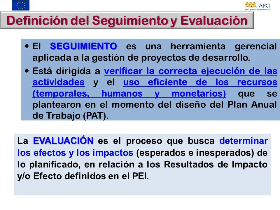 Definición del Seguimiento y Evaluación