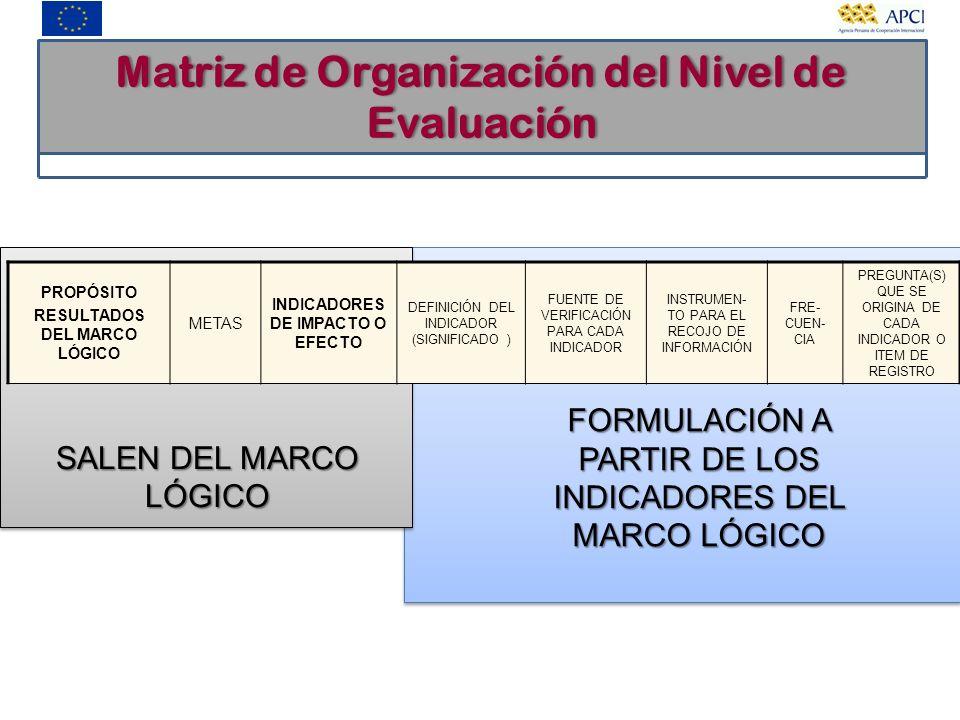 Matriz de Organización del Nivel de Evaluación