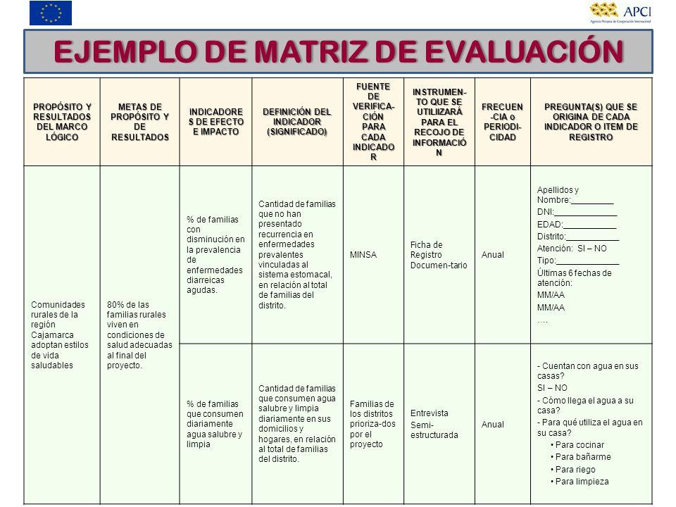 EJEMPLO DE MATRIZ DE EVALUACIÓN