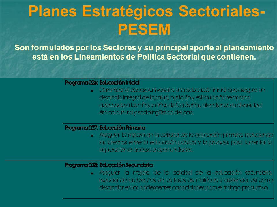 Planes Estratégicos Sectoriales-PESEM