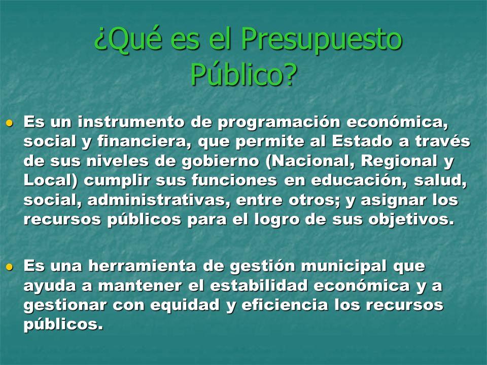 ¿Qué es el Presupuesto Público