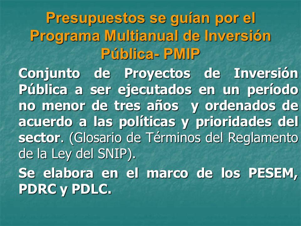 Presupuestos se guían por el Programa Multianual de Inversión Pública- PMIP