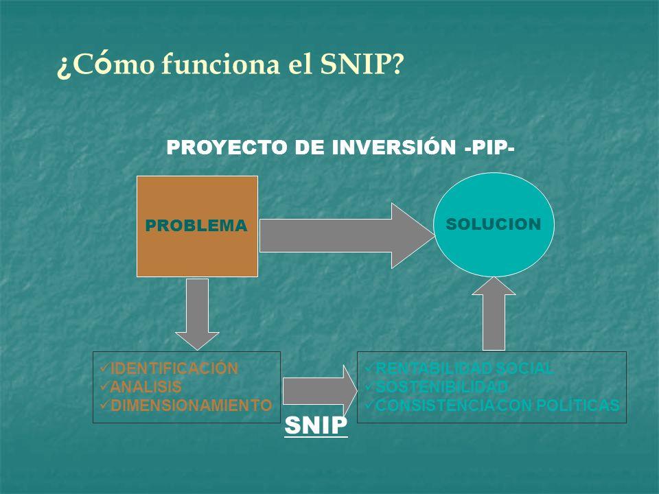 PROYECTO DE INVERSIÓN -PIP-