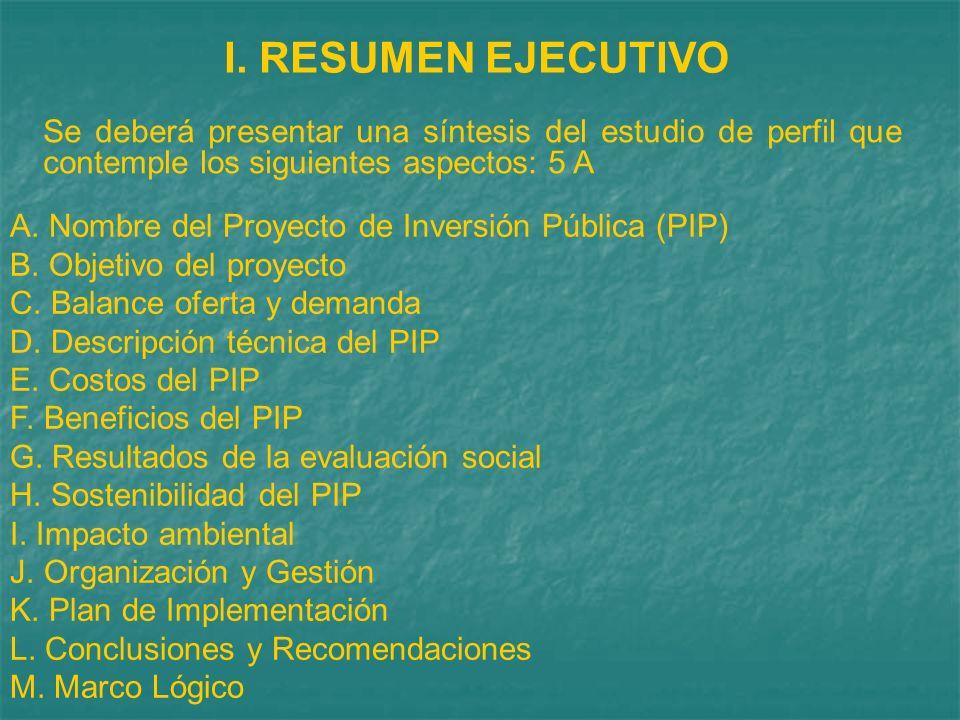 I. RESUMEN EJECUTIVO Se deberá presentar una síntesis del estudio de perfil que contemple los siguientes aspectos: 5 A.