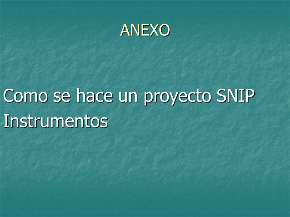 Como se hace un proyecto SNIP Instrumentos