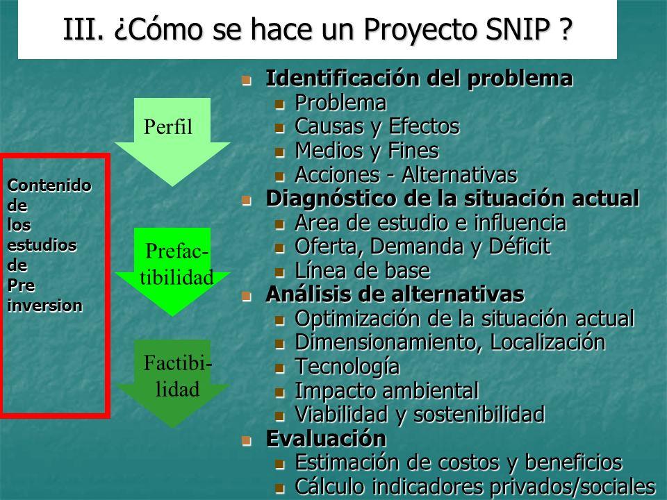 III. ¿Cómo se hace un Proyecto SNIP