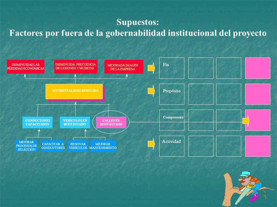 Factores por fuera de la gobernabilidad institucional del proyecto
