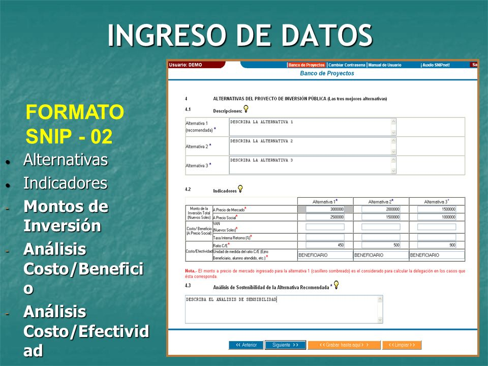 INGRESO DE DATOS FORMATO SNIP - 02 Alternativas Indicadores