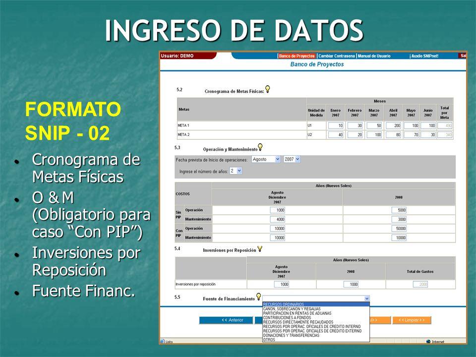 INGRESO DE DATOS FORMATO SNIP - 02 Cronograma de Metas Físicas