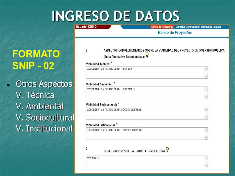 INGRESO DE DATOS FORMATO SNIP - 02 Otros Aspectos V. Técnica