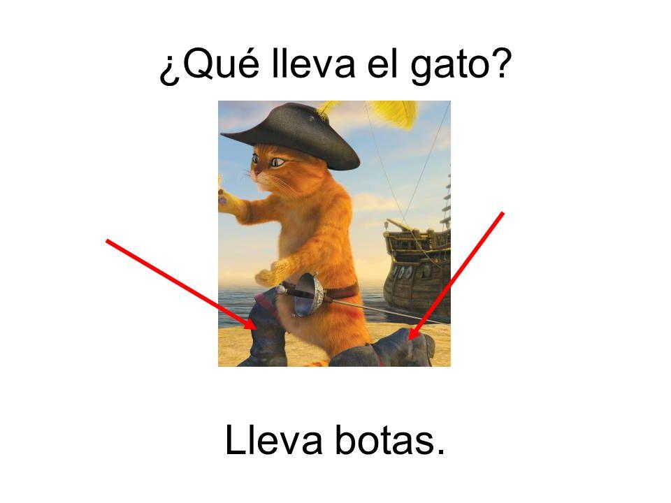 ¿Qué lleva el gato Lleva botas.