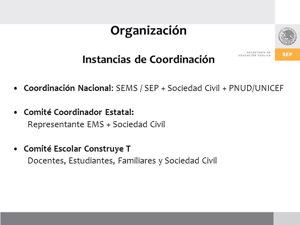 Organización Instancias de Coordinación
