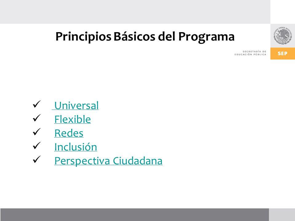 Principios Básicos del Programa