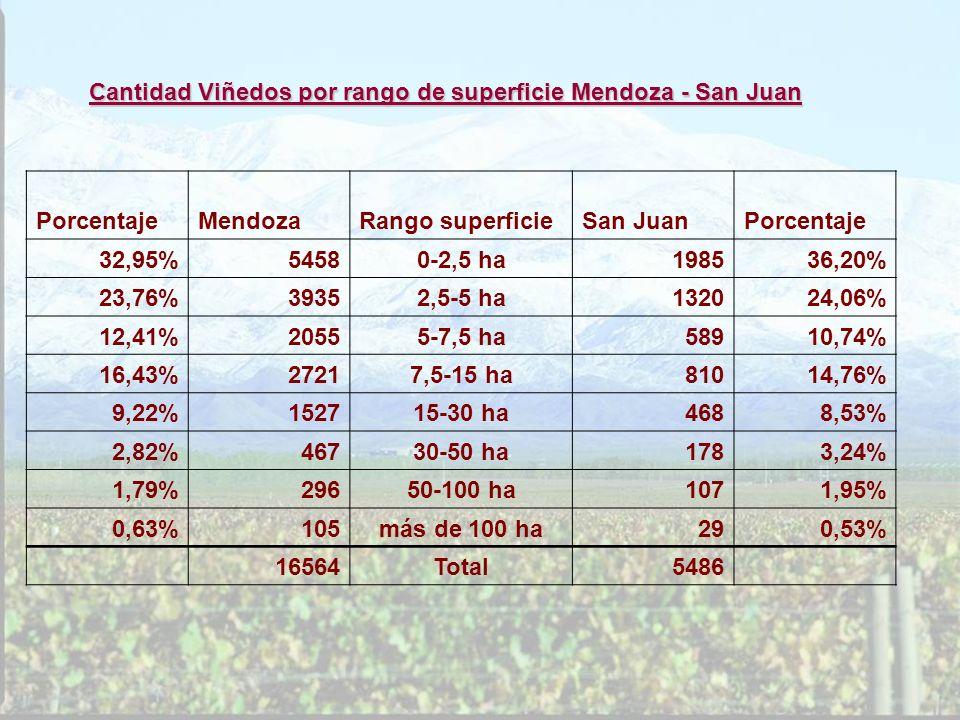 Cantidad Viñedos por rango de superficie Mendoza - San Juan