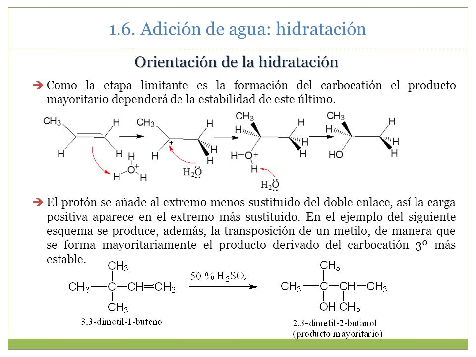 1.6. Adición de agua: hidratación