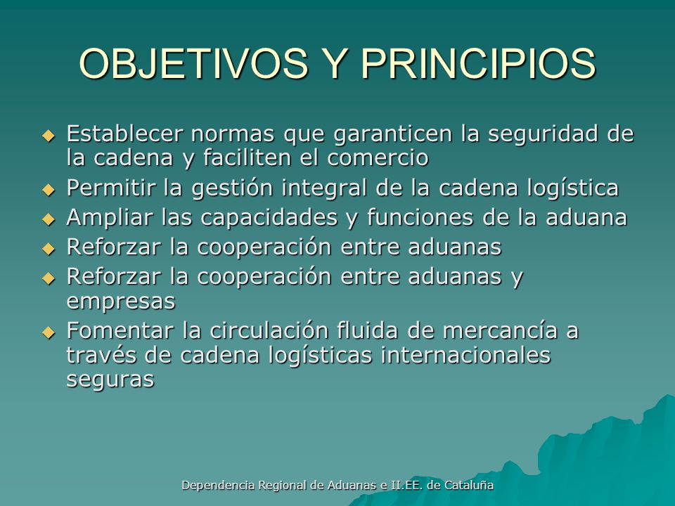 OBJETIVOS Y PRINCIPIOS