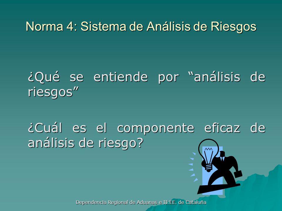 Norma 4: Sistema de Análisis de Riesgos
