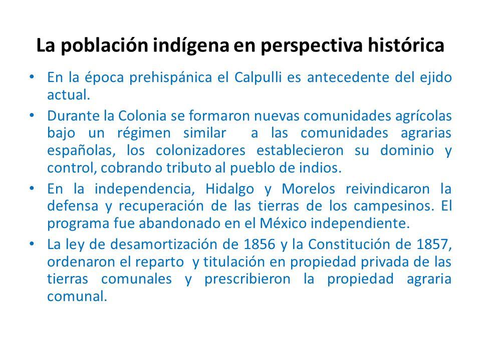 La población indígena en perspectiva histórica