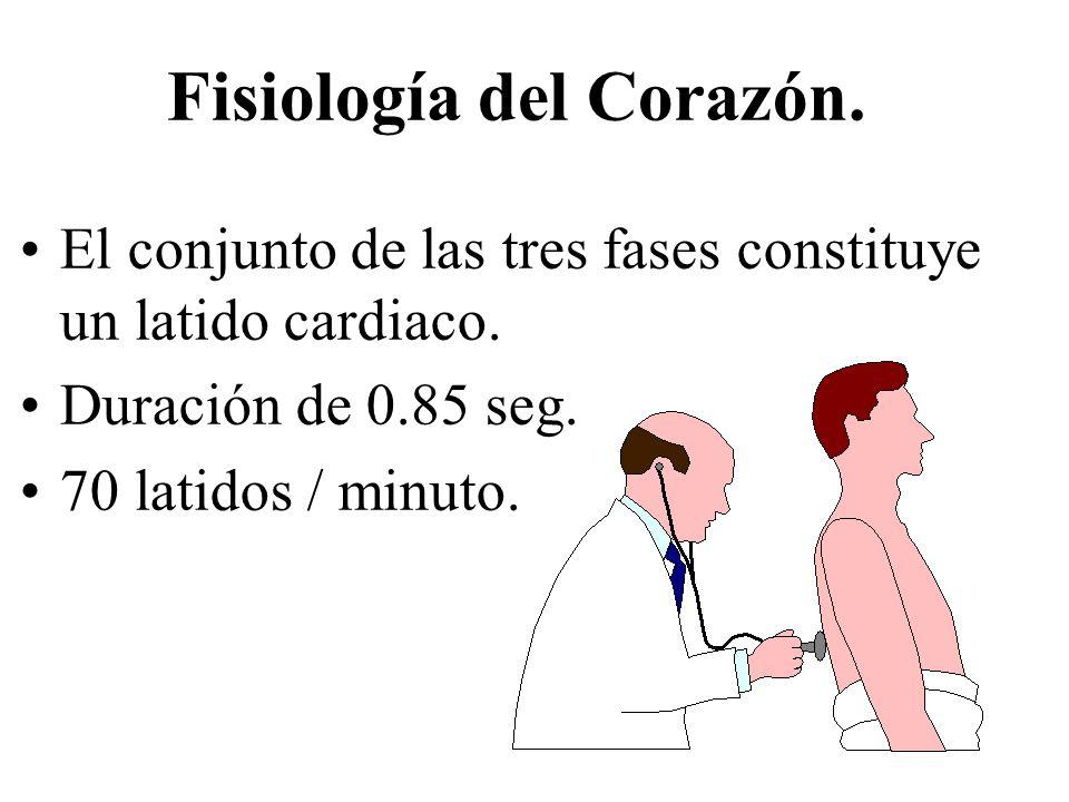 Fisiología del Corazón.