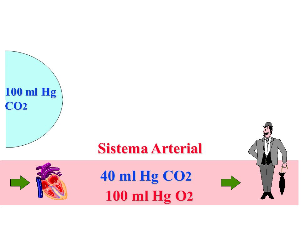 100 ml Hg CO2 Sistema Arterial 40 ml Hg CO2 100 ml Hg O2