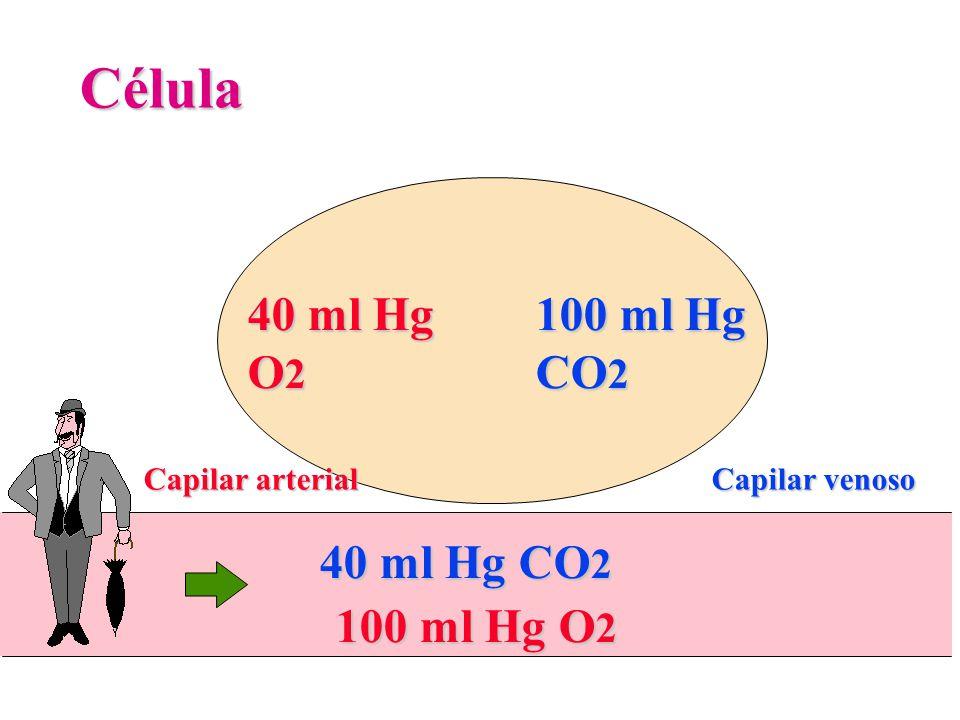 Célula 40 ml Hg O2 100 ml Hg CO2 40 ml Hg CO2 100 ml Hg O2