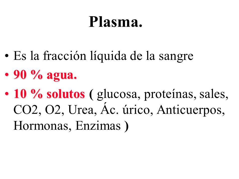 Plasma. Es la fracción líquida de la sangre 90 % agua.