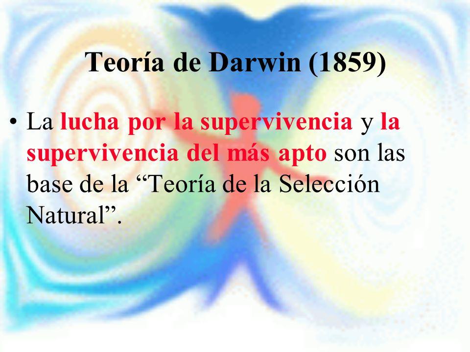 Teoría de Darwin (1859) La lucha por la supervivencia y la supervivencia del más apto son las base de la Teoría de la Selección Natural .